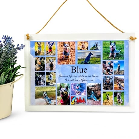 Personalised Deluxe Wall Sign Pet Keepsake