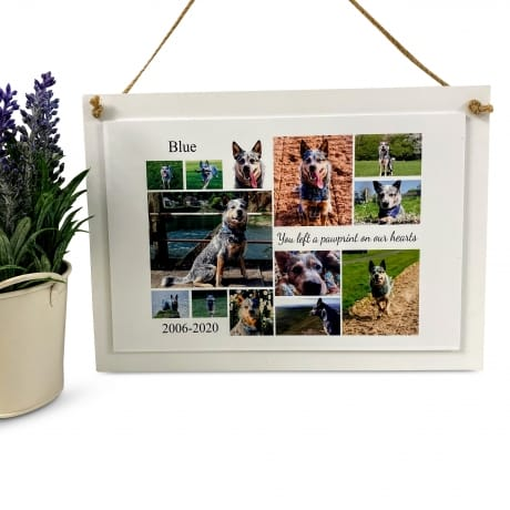 Personalised Deluxe Wall Sign Pet Remembrance Keepsake