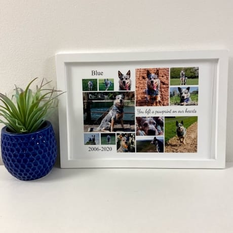Personalised Deluxe Wall Frame Pet Remembrance Keepsake