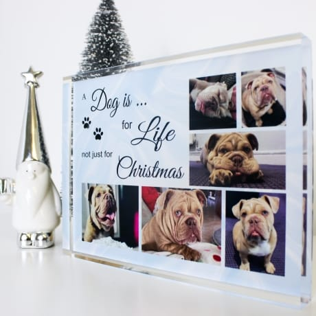 Personalised Collage - A Dog is for life photo block