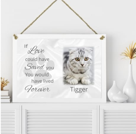 Pet Remembrance Plaque If love could have saved you