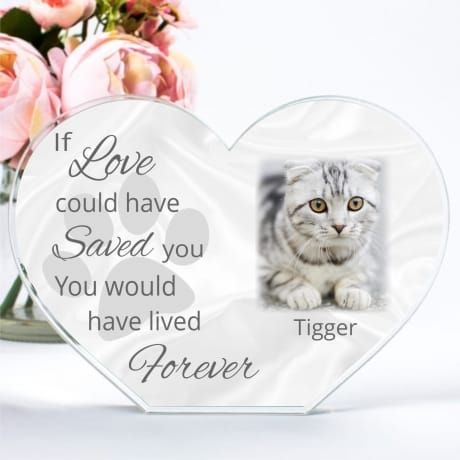 Pet Remembrance Heart  If love could have saved you