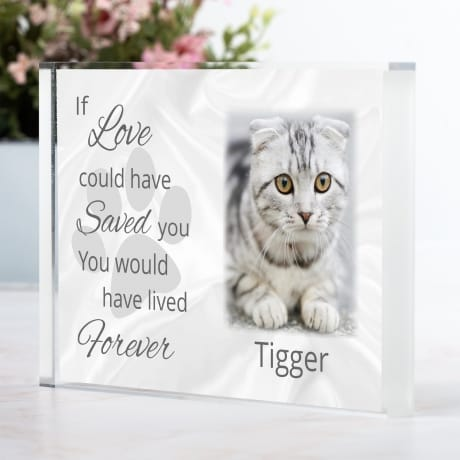 Pet Remembrance block If love could have saved you