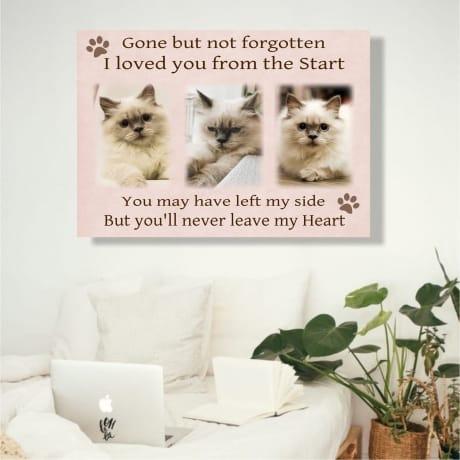 Pet Remembrance Canvas Collage