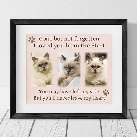 Pet Remembrance Photo Collage