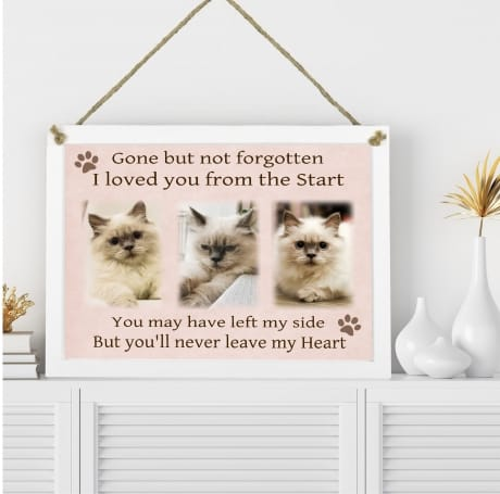 Pet Remembrance hanging wall Plaque Collage