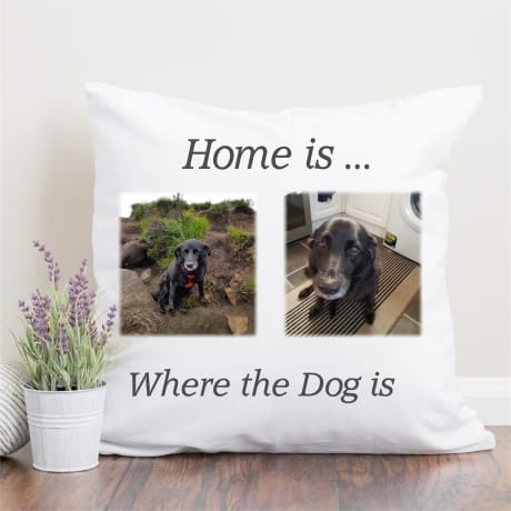 Personalised photo cushion Home is where the dog is