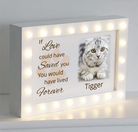 If love could have saved you Light box