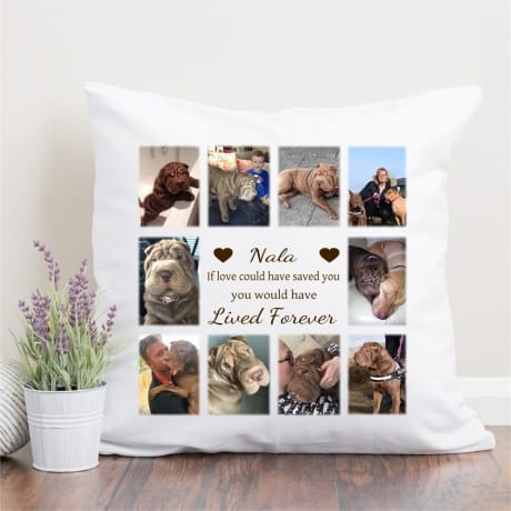 Personalised Pet Remembrance cushion - Lived Forever