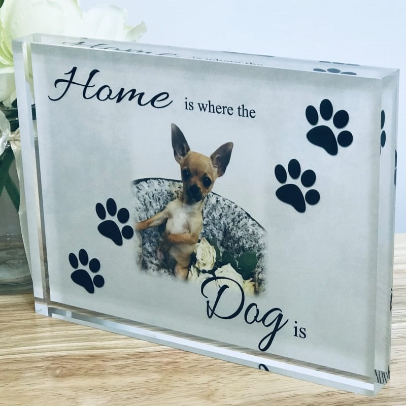 Home Is Where the Dog is Photo block
