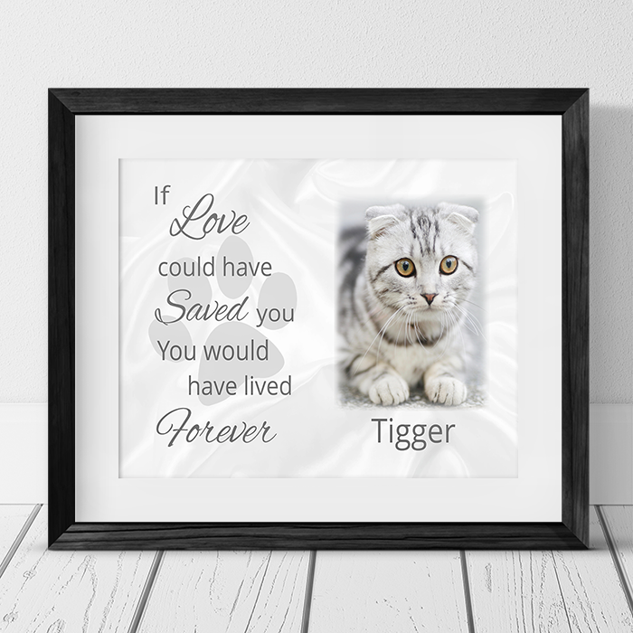 Pet Remembrance  If love could have saved you