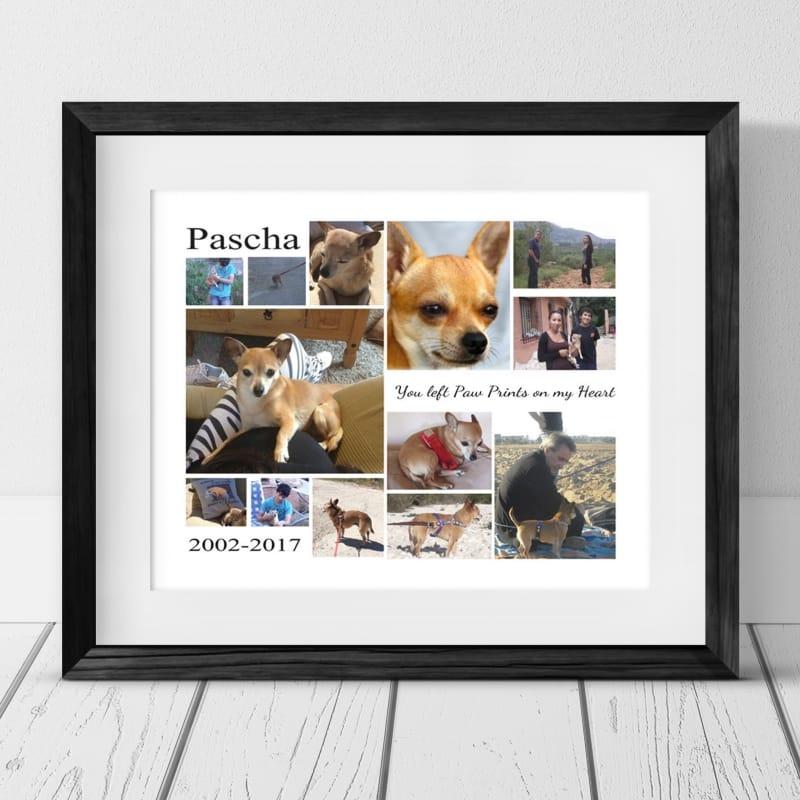 13 Photo Collage - Pet Remembrance