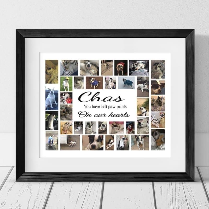 35 Photo Collage - Pet Remembrance