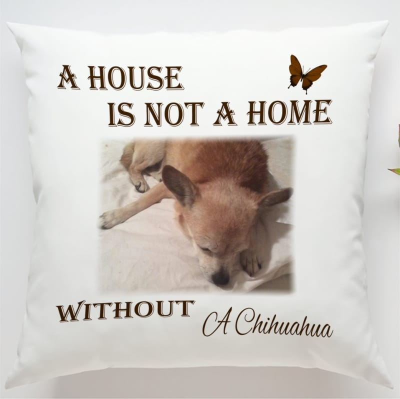 Photo Cushion: A house is not ...