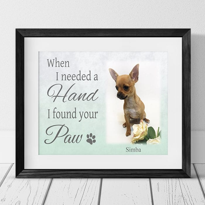 When I needed a hand Pet Photo Frame
