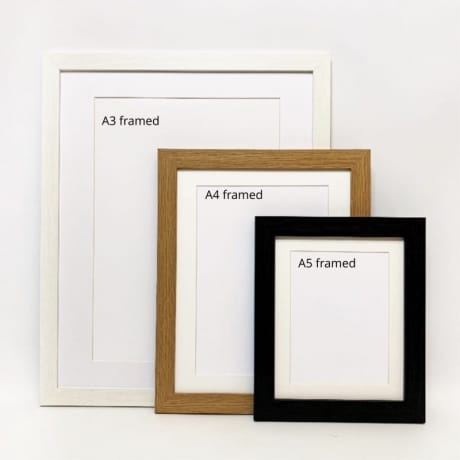 Frame only