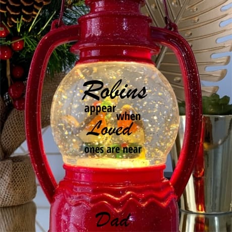 Robin Snow Globe Red - Remembrance