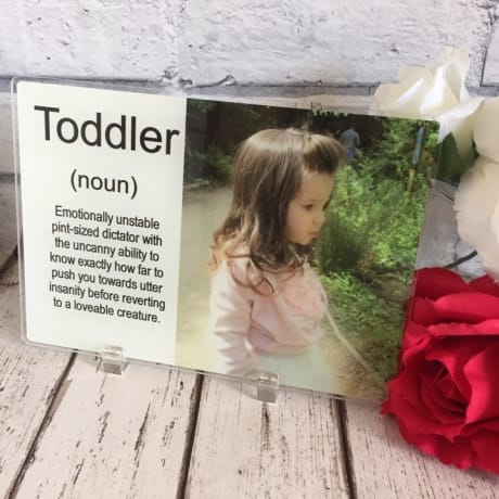 Toddler noun
