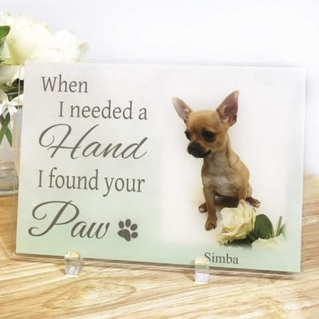 When I Needed A Hand Pet Acrylic Plaque