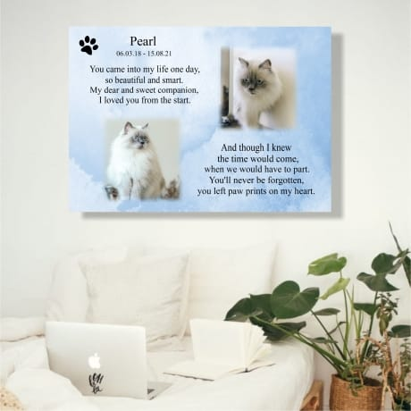 Pet Remembrance Canvas  You came into my life