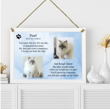 Pet Remembrance Plaque You came into my life
